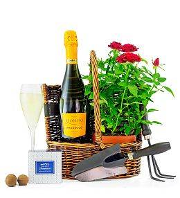 Rose and Prosecco Basket