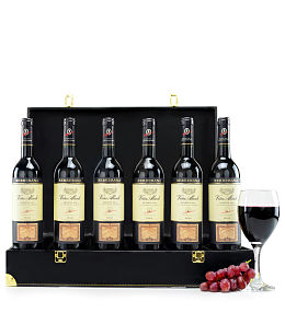 Connoisseur's Wine Case