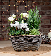White Winter Basket