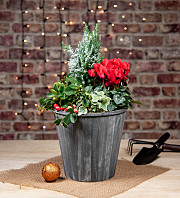 Christmas Mix Bucket