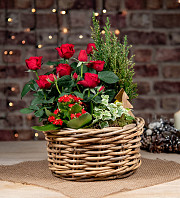 Red Winter Basket