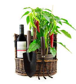 Chilli Plant and Wine