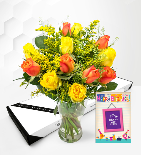 Sunset Rose Bundle