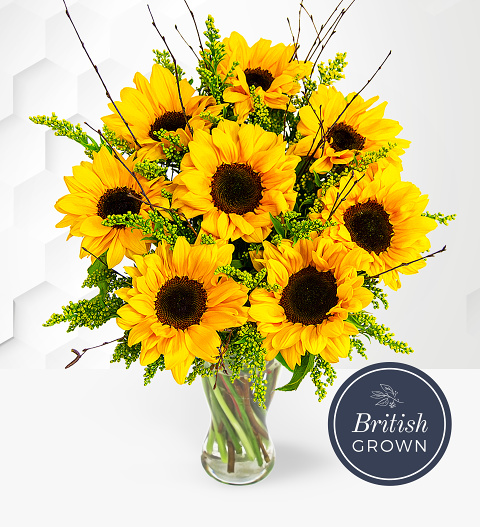 Sensational Sunflowers - Sunflower Delivery - Sunflower Bouquet - Sunflowers Delivered UK - Bunch of Sunflowers