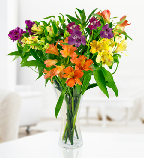 Cheap Flowers Free Chocolates Free Vase Discount Flowers