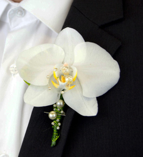 White Orchid Boutonniere » Buttonholes £22.99 | FREE ...