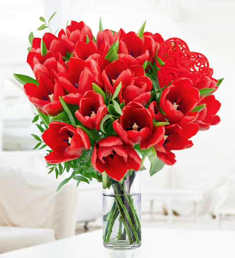 Valentineu0027s Tulips