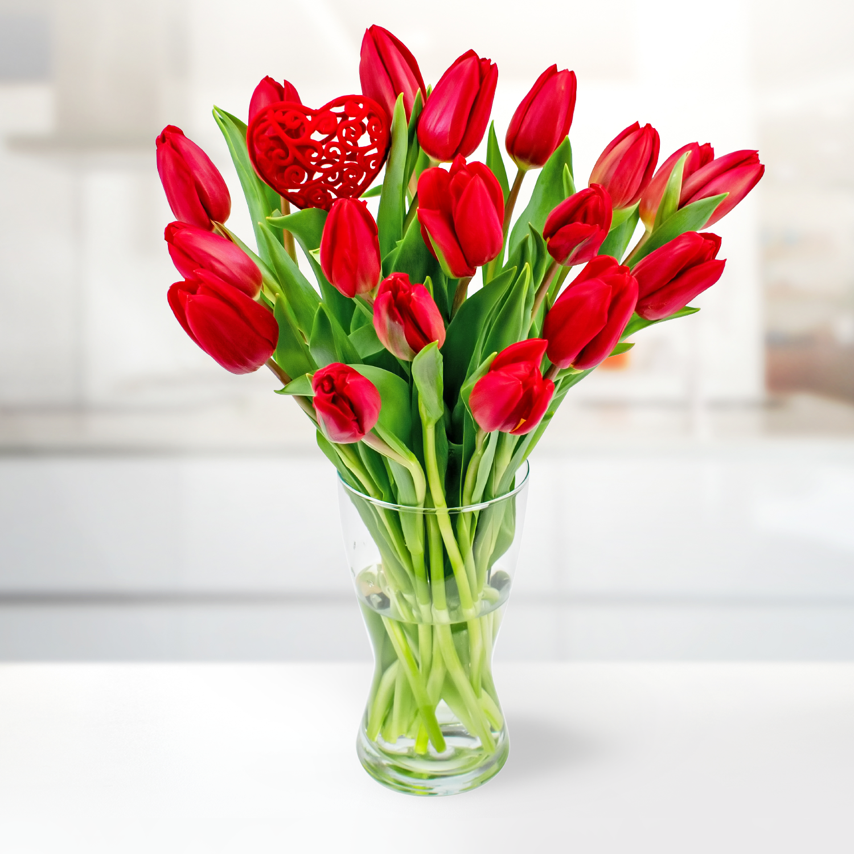 Lush Tulips
