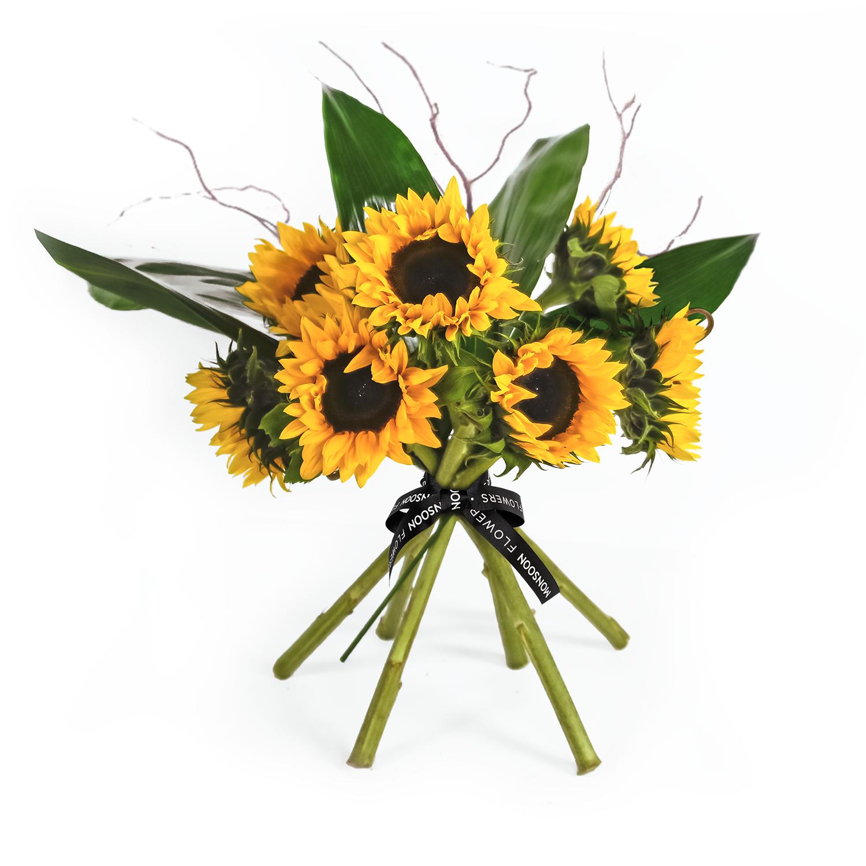 British Sunflowers