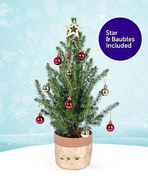 Complete Mini Christmas Tree