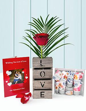 Luxury Single Rose Gift
