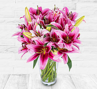 Luxury Pink Lilies
