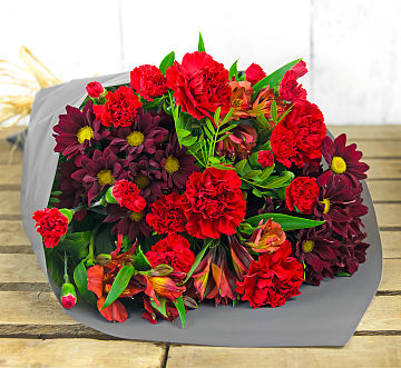 Free flower delivery on Vibrant Delight