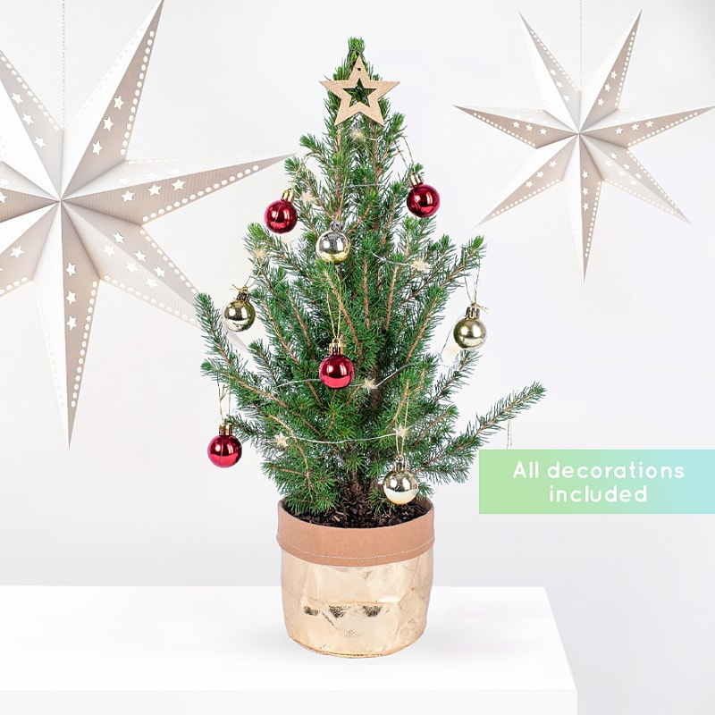 Mini Christmas Tree with Baubles