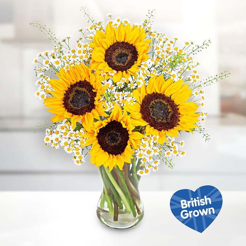 British Sunflower Surprise