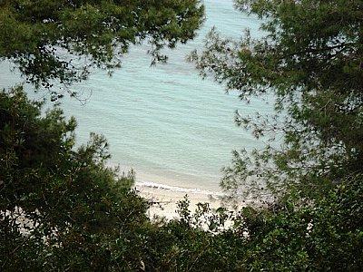 Image 9 | Stunning Beachfront Hotel 123665