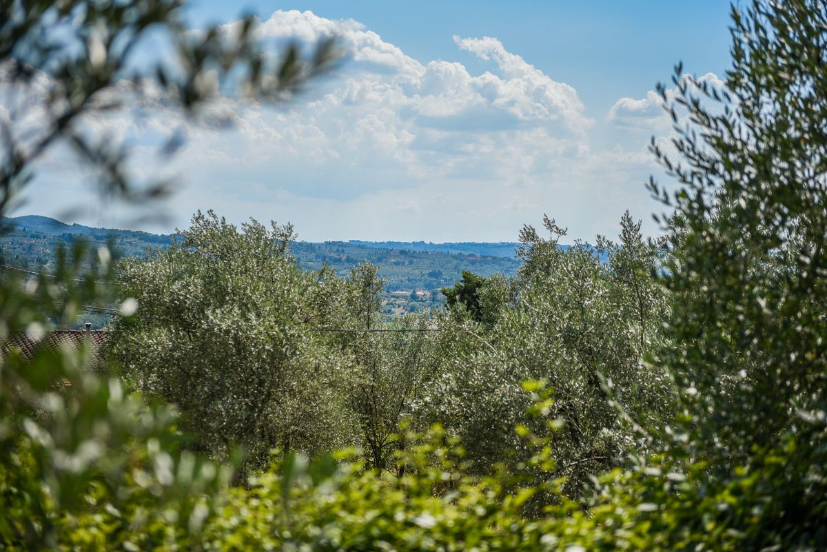 Image 4 | 7 bedroom villa for sale with 1 hectares of land, Florence, Chianti 193677