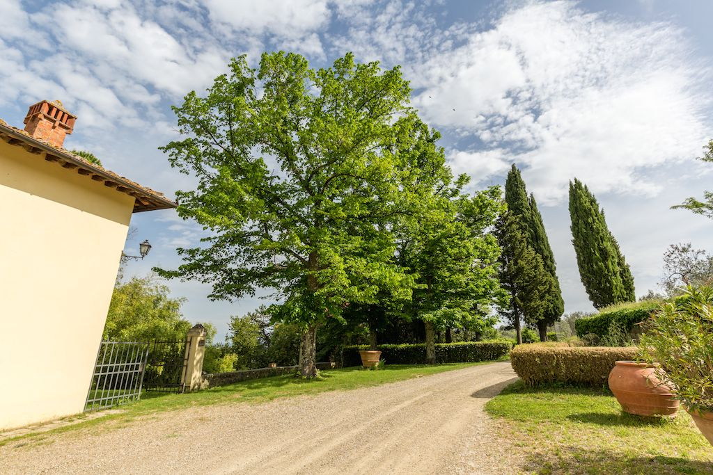 Image 21 | 7 bedroom hotel for sale with 60 hectares of land, Chianti, Florence, Chianti Wine Region 195317