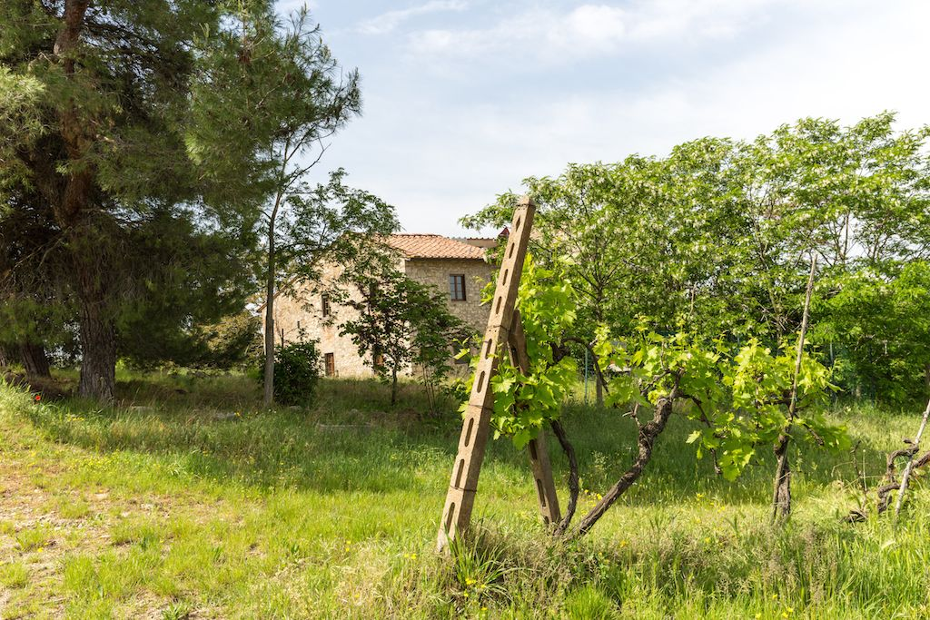Image 28 | 7 bedroom hotel for sale with 60 hectares of land, Chianti, Florence, Chianti Wine Region 195317