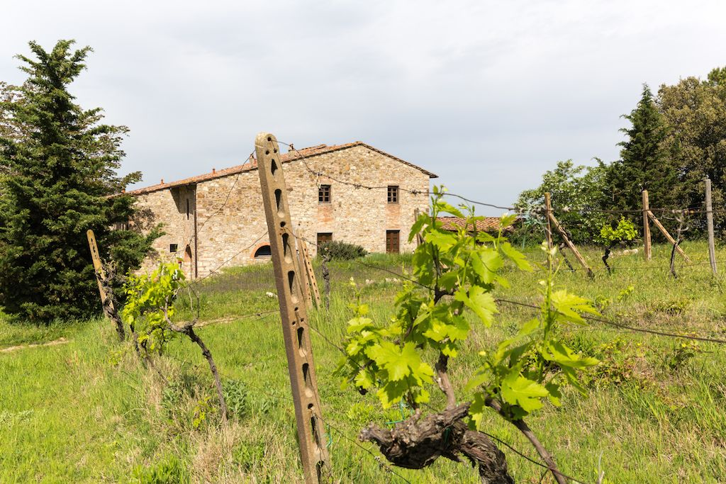 Image 29 | 7 bedroom hotel for sale with 60 hectares of land, Chianti, Florence, Chianti Wine Region 195317