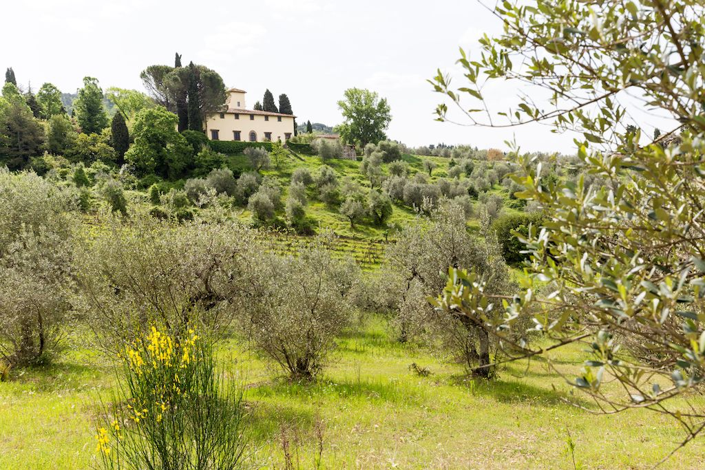 Image 30 | 7 bedroom hotel for sale with 60 hectares of land, Chianti, Florence, Chianti Wine Region 195317