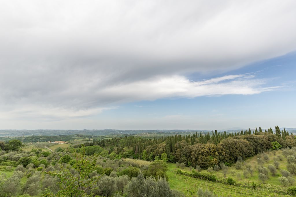 Image 6 | 7 bedroom hotel for sale with 60 hectares of land, Chianti, Florence, Chianti Wine Region 195317