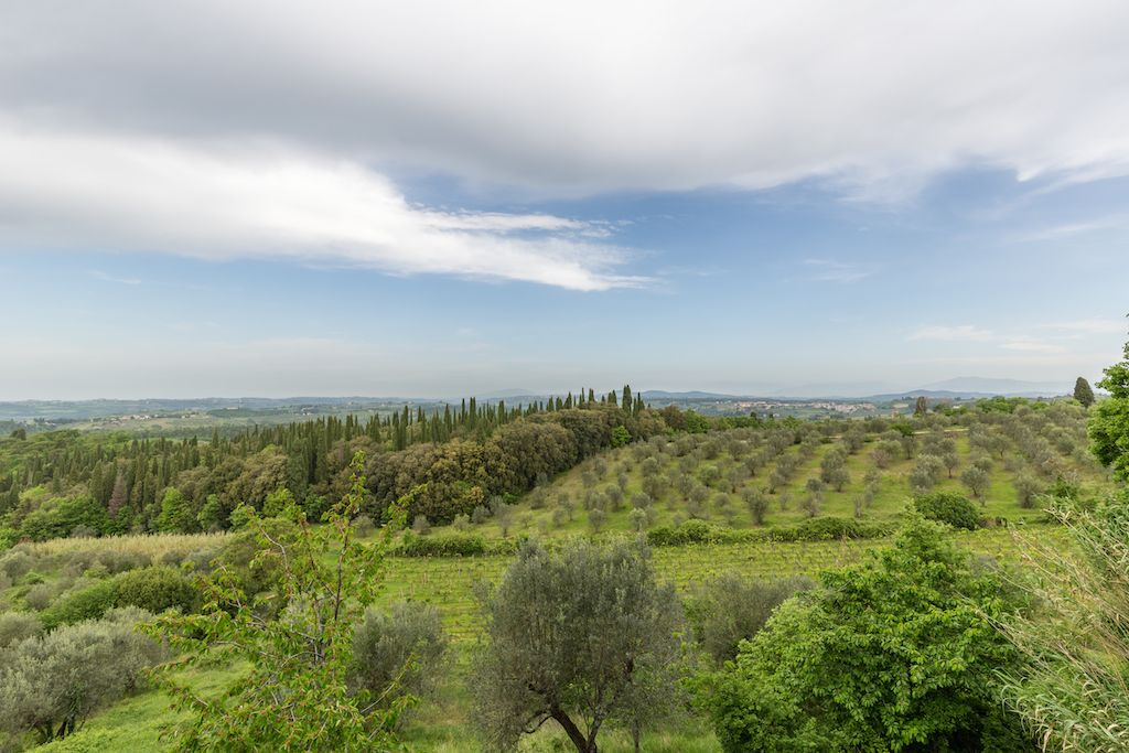 Image 7 | 7 bedroom hotel for sale with 60 hectares of land, Chianti, Florence, Chianti Wine Region 195317