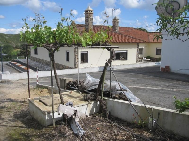 Image 7   4 bedroom villa for sale with 0.6 hectares of land, Cadaval, Lisbon District, Costa de Prata Silver Coast 196233