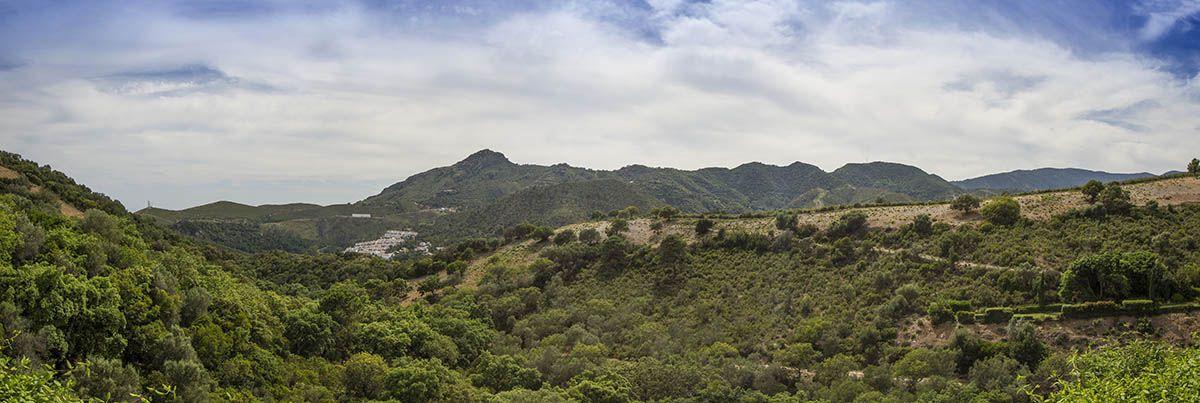 Image 21   10 bedroom villa for sale with 1.1 hectares of land, La Zagaleta Golf, Benahavis, Malaga Costa del Sol, Andalucia 196456