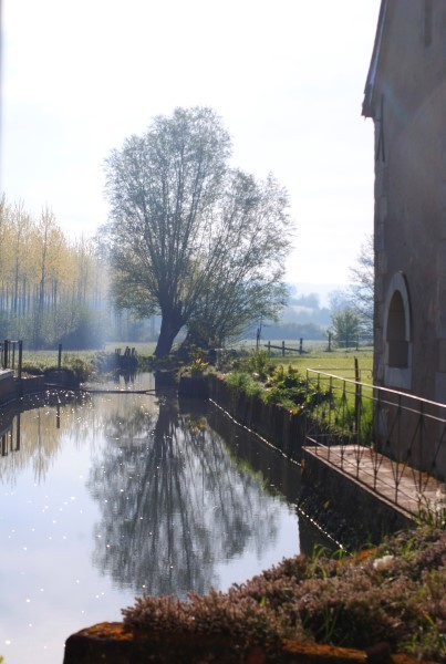 Image 13 | 5 bedroom mill for sale with 2 hectares of land, Chateau du Loir, Sarthe , Loire Valley 198909