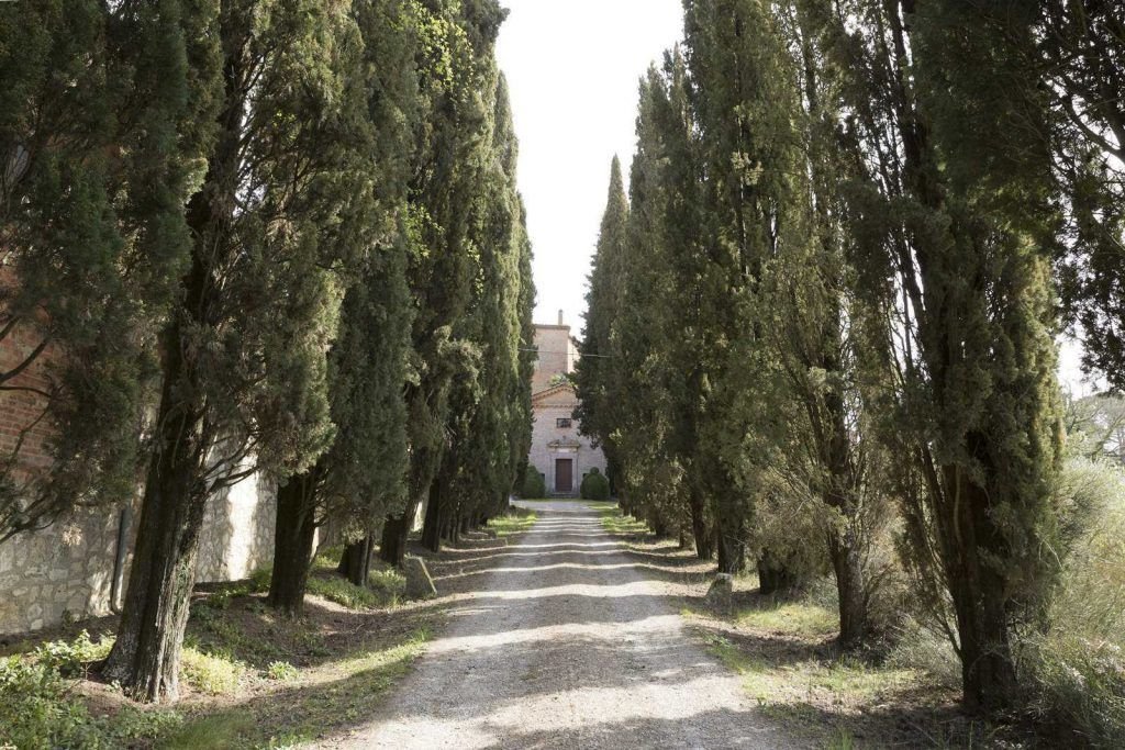 Image 35 | 20 bedroom manor house for sale with 260 hectares of land, Montalcino, Siena, Tuscany 200988