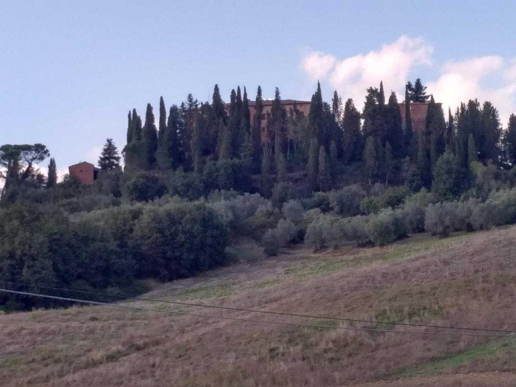 Image 4 | 20 bedroom manor house for sale with 260 hectares of land, Montalcino, Siena, Tuscany 200988