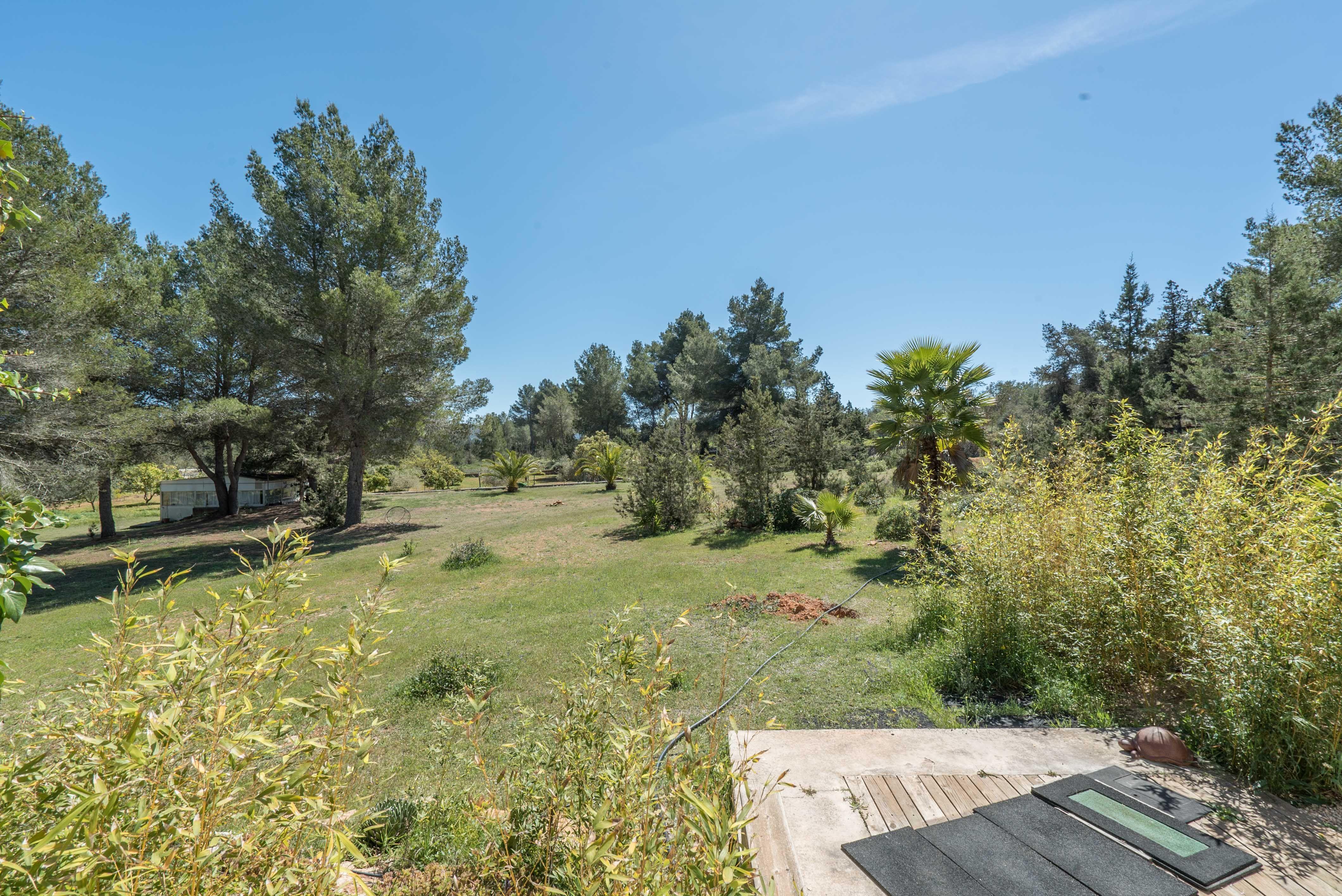 Image 16 | 4 bedroom villa for sale with 1 hectares of land, Santa Gertrudis de Fruitera, Central Ibiza, Ibiza 201040