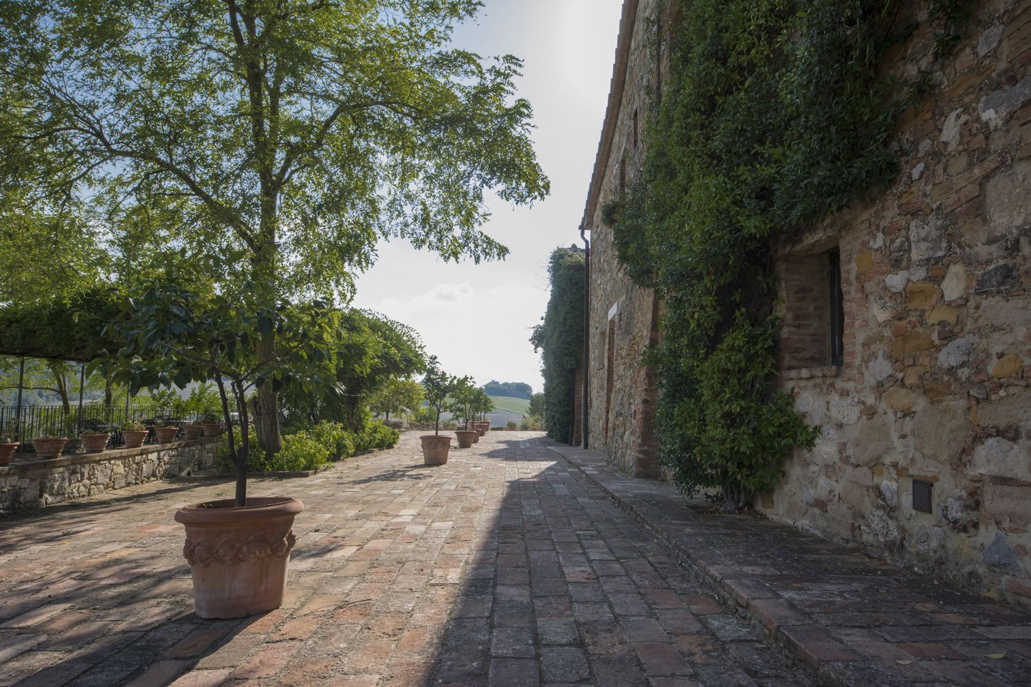 Image 1 | 4 bedroom villa for sale with 110 hectares of land, Trequanda, Siena, Chianti Wine Region 202371