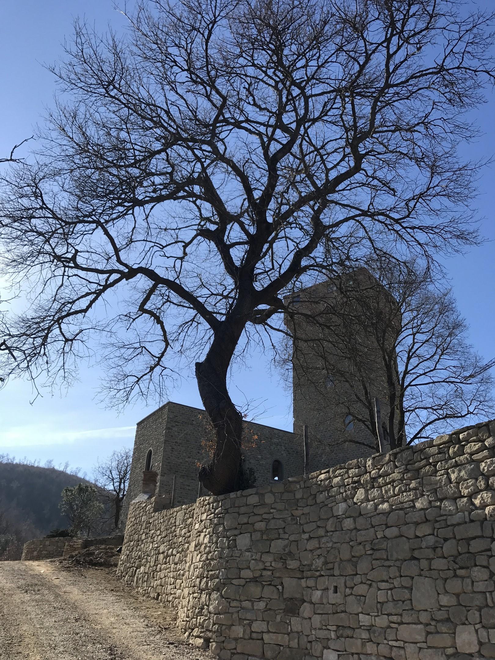 Image 8   7 bedroom castle for sale with 6,500m2 of land, Passignano sul Trasimeno, Perugia, Umbria 204441