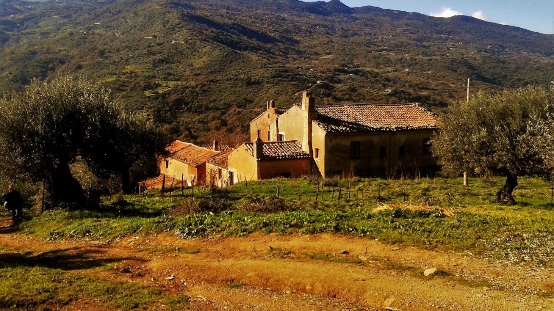 Image 1   20 bedroom farmhouse for sale with 65 hectares of land, San Mauro Castelverde, Palermo, Sicily 204621