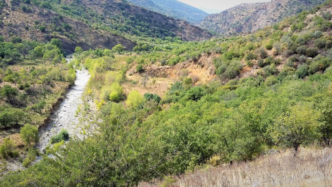 Image 11   20 bedroom farmhouse for sale with 65 hectares of land, San Mauro Castelverde, Palermo, Sicily 204621