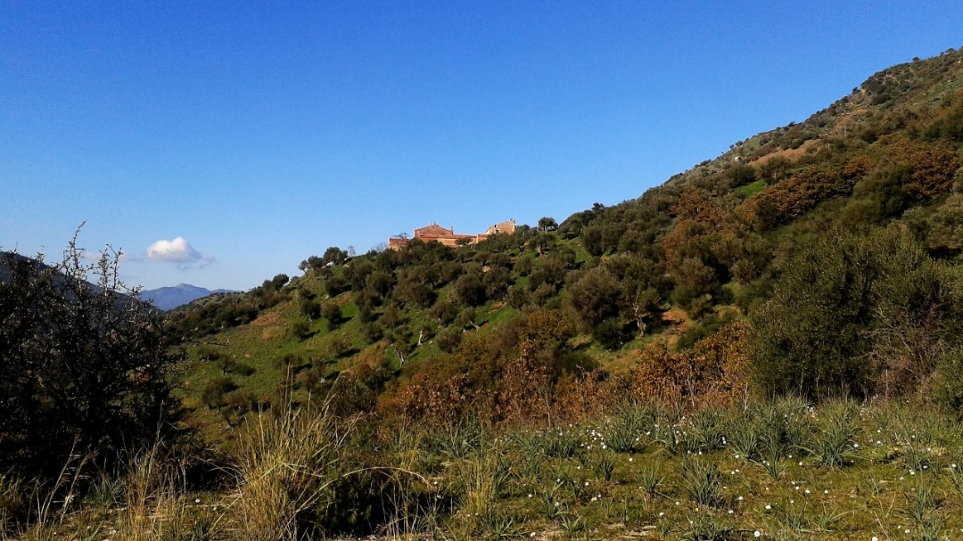 Image 15   20 bedroom farmhouse for sale with 65 hectares of land, San Mauro Castelverde, Palermo, Sicily 204621