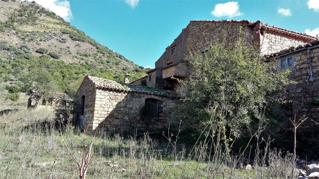 Image 20   20 bedroom farmhouse for sale with 65 hectares of land, San Mauro Castelverde, Palermo, Sicily 204621
