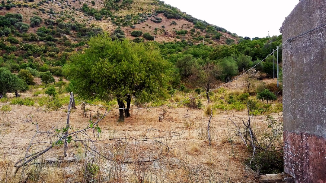 Image 9   20 bedroom farmhouse for sale with 65 hectares of land, San Mauro Castelverde, Palermo, Sicily 204621
