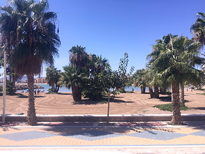 Image 3 | Three Star Hotel for sale In Murcia  with More than 80 Bedrooms and Sea  Views. 205374