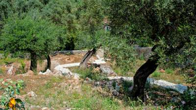 Image 13   5 bedroom villa for sale with 0.95 hectares of land, Barbati, Corfu, Ionian Islands 205617