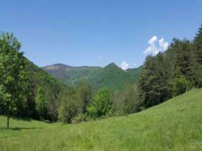Image 6   6 bedroom farmhouse for sale with 8 hectares of land, Vallespir, Pyrenees-Orientales , Pyrenees Vallespir 207316