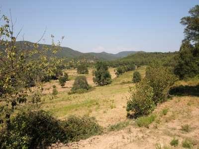 Image 8   95 Hectare Estate near Saint Tropez, France for Sale 208934