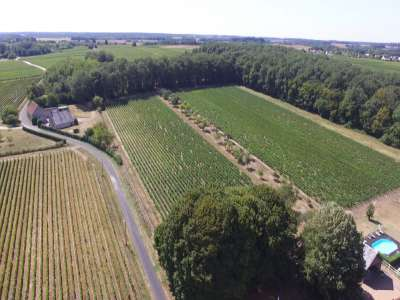 Image 19   13 bedroom French chateau for sale with 21 hectares of land, Blere, Indre-et-Loire , Loire Valley 210450