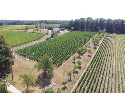 Image 3   13 bedroom French chateau for sale with 21 hectares of land, Blere, Indre-et-Loire , Loire Valley 210450