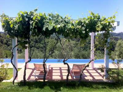 Image 10   13 bedroom villa for sale with 29 hectares of land, Pisa, Tuscany 212922