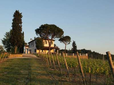 Image 13   13 bedroom villa for sale with 29 hectares of land, Pisa, Tuscany 212922