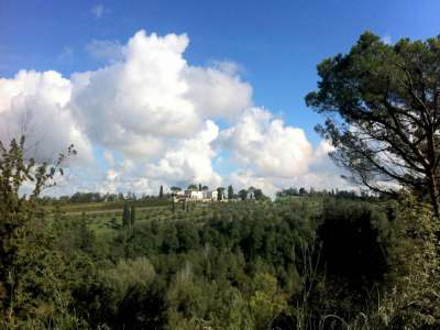 Image 26   13 bedroom villa for sale with 29 hectares of land, Pisa, Tuscany 212922