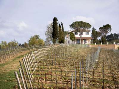 Image 8   13 bedroom villa for sale with 29 hectares of land, Pisa, Tuscany 212922